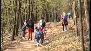 Lainzer Tiergarten 04-94