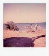 In bicicletta fin in riva al mare