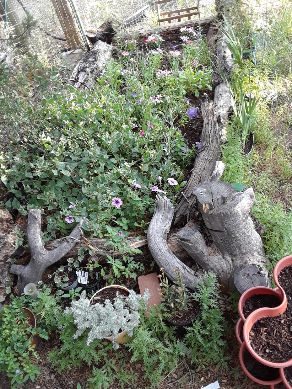 log flower bed