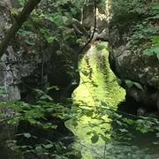 Das Wissen der Druiden Mitteleuropas