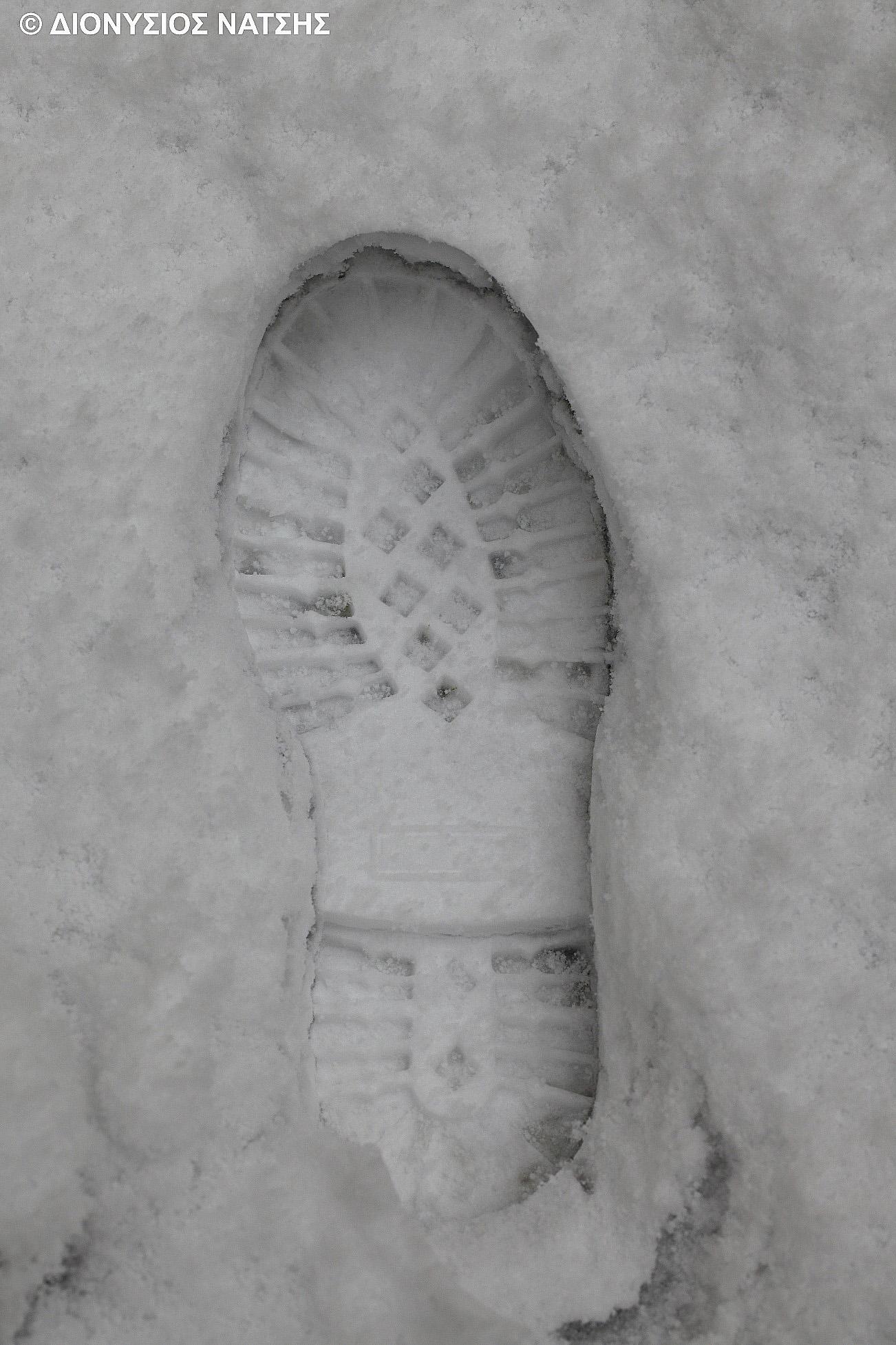 Μικρογραφία