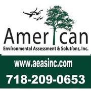 American Environmental