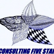 CONSULTING FIVE STAR GLOBAL