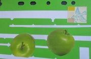 Green Apples 2020