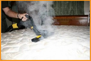 Bed Bugs Pest control services in kalyan