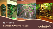 Large Selection of Custom Reptile Cages