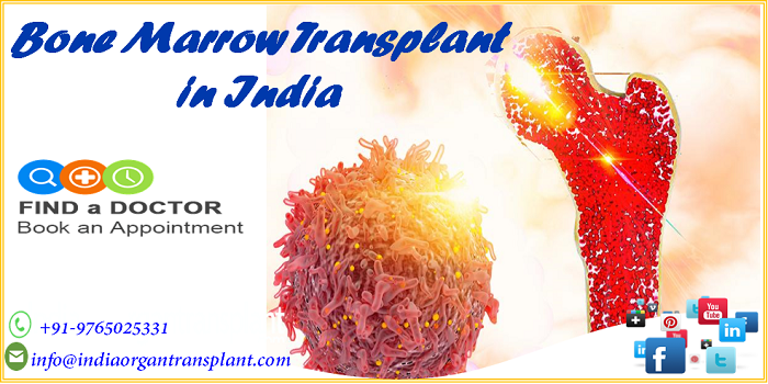 Bone Marrow Transplant in India, Overview and Reasons to consider