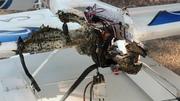 LiPo will burn in a crash