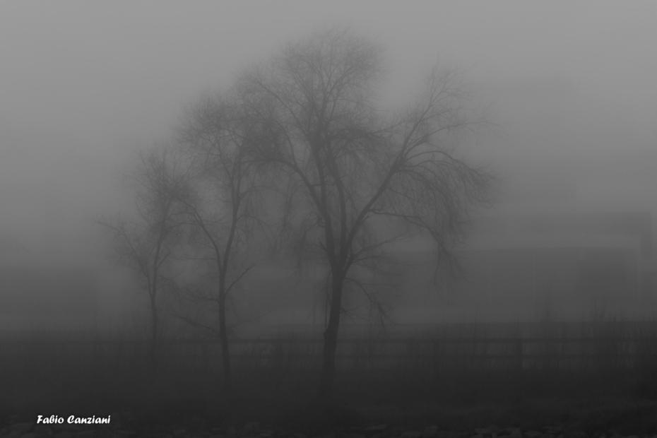 Fantasmi nella nebbia