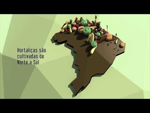 Vídeo Animação: a evolução da agricultura nos últimos 50 anos