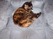 Kiri on her chair