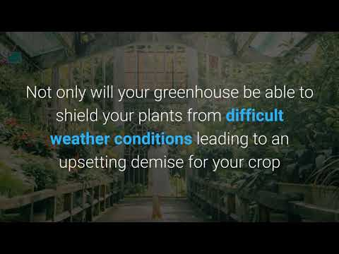 Greenhouse Clearance Sale UK||greenhousestores.co.uk||448000988877
