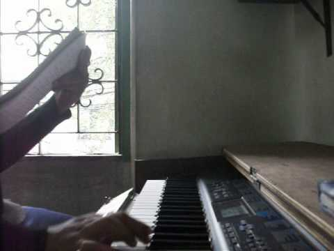 raag singhel in synthesizer by pratanu banerjee