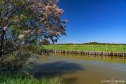 Canali di Laguna