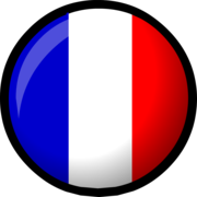 France_flag ~ WHAT ARE YOU DOING ? NOT THE WAY !