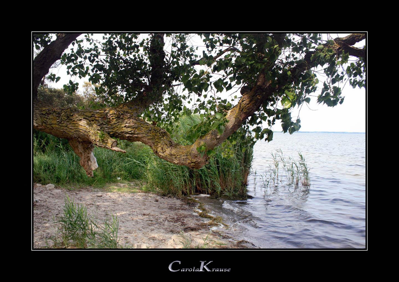 Small natural Beach