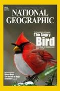 NGM Parody 2011-04 The Angry Bird