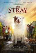 The Stray (2017)