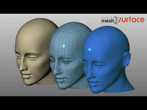 Mesh2Surface Overview