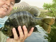 Bob Gaines Bluegill Fly Fishing