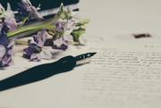 Writer's Cove