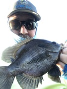 Had a Dozen Decent Bluegill on This Trip Also.....9/6/2020