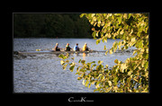 Rowing in the Evening