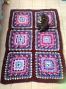 Blanket 52