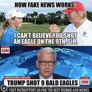 fake-news, facebook-socialism,boats