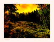Test Wonderful Nature,  final b , canvas + signed