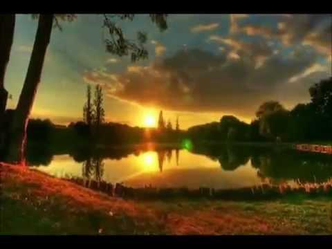BOBBY GOLDSBORO-HONEY-I MISS YOU-with lyrics