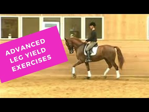 How to Leg Yield an Advanced  Dressage Horse