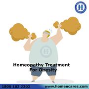 Best Homeopathy Treatment For obesity In Shivamogga