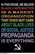 BLM is a Communist Marxist Talmudic Jew Controlled Organization