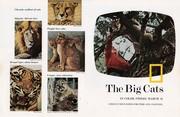 1974 - 2 March ~ The Big Cats (F+B)