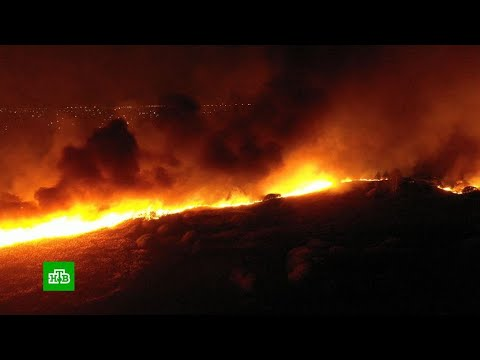 Russia: Massive Wildfires in Voronezh Oblast Caused by Arson
