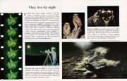 1973 - 1 Jan ~ Strange Creatures of the Night (inside)