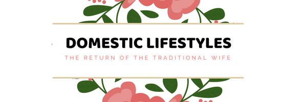 Domestic Lifestyles Logo