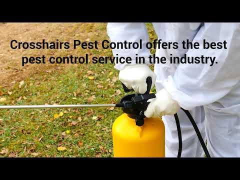 Commercial Pest Control Services in Las Vegas