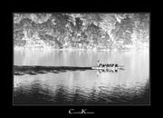 Leisure Activities on the Lake