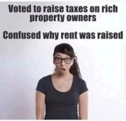 Because libtards are stupid beyond belief