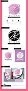 logo Zirin_StyleGuide