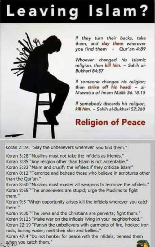 2020 like fck islam