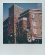 Amsterdam's autumn facades