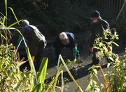 Desilting the pond, Nov 4th '20