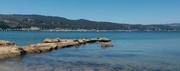 Pillar Point Harbor Beach Clean-Up
