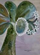 Green Thumb Cactus