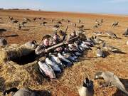 Good day hunting