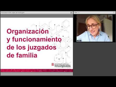 Organització i funcionament dels Jutjats de Família 1/2