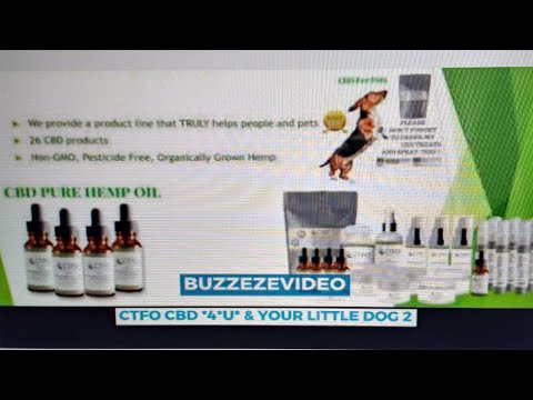 BUZZEZEVIDEO CTFO CBD PRODUCTS FOR PETS